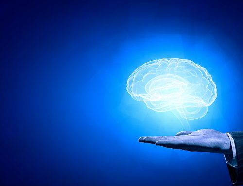 Vergleich im Studiengang Psychologie mit der Universität Potsdam